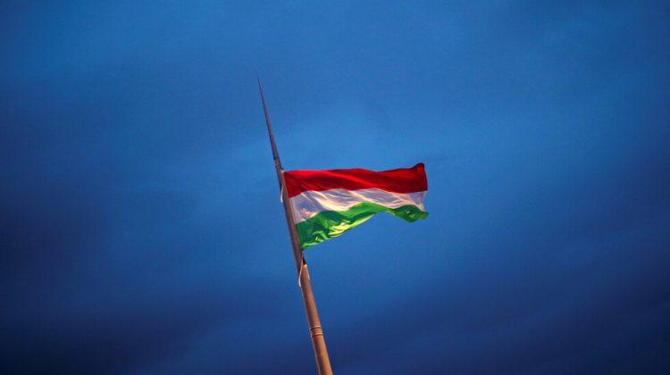 الهجرة إلى المجر