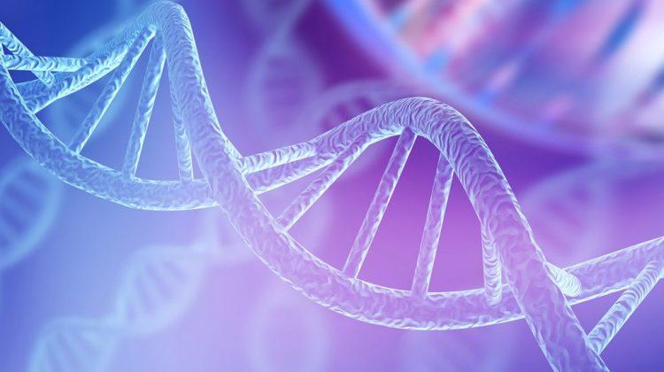 دراسة علم الوراثة